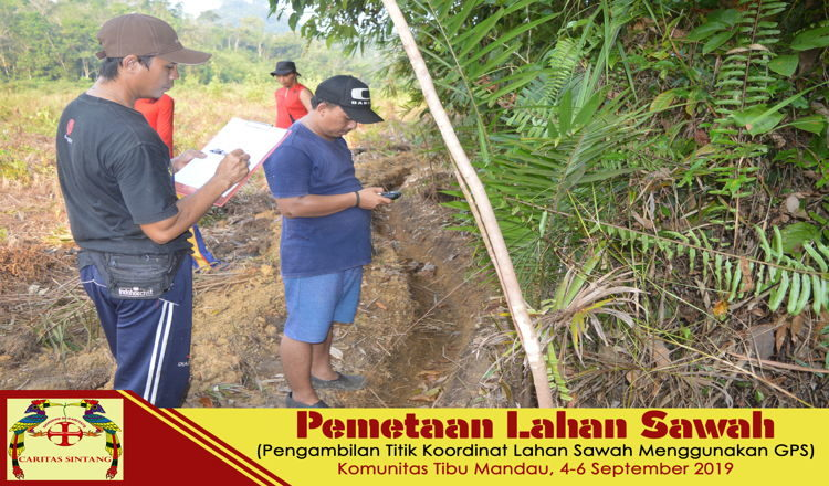 4 - Pemetaan Lahan Sawah - TM 3 Featured